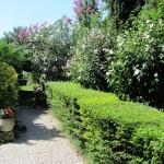 il-giardino-di-roberta_13