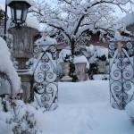 il-giardino-di-roberta_15