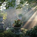 il-giardino-di-roberta_16