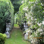 il-giardino-di-roberta_5