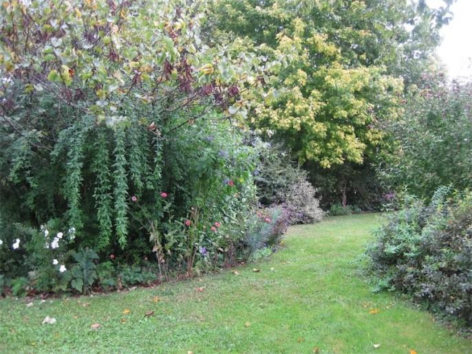 un angolo del giardino di Clara